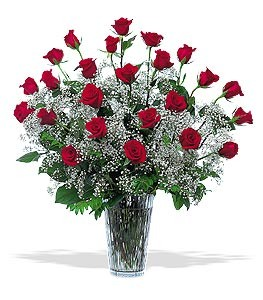 2 Dozen RED Roses Double the Babys Breath Gorgeous Vase of Impressive Red Roses in Bend, OR | AUTRY'S 4 SEASONS FLORIST