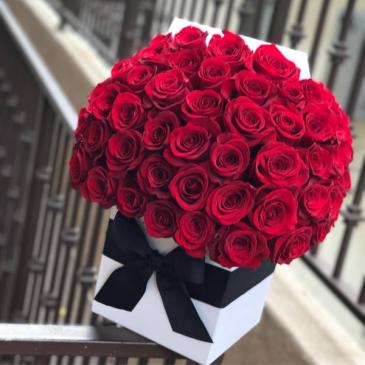 3 dozen Rose Arrangement  Stunning Red Roses !!!