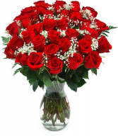 3 Dozen Roses Flower Delivery Fort Worth
