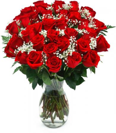 3 Dozen Roses Same-Day Delivery