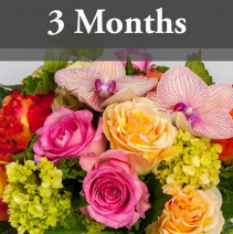 3 Months of Fresh Cut Flowers Bouquet