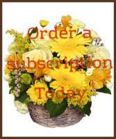3 months subscription  Smaller bedside or desk top arrangement