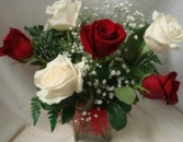 3 RED and 3 WHITE Roses arranged in a  cube vase with baby's breath! (miami colors)