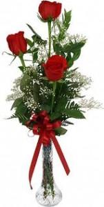 3 Red Roses Bud Vase