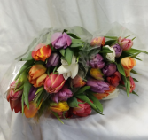 30 Stems Double Tulips  Wrapped  Stems