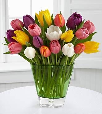30 Tulips assorted