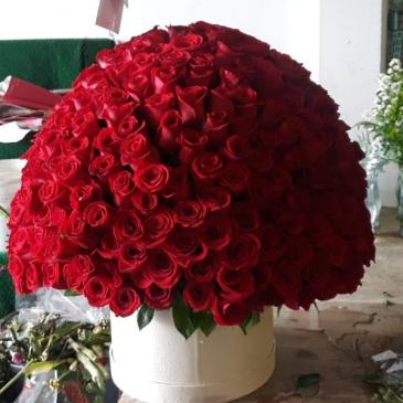 300 grand deluxe rose box
