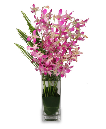 DAZZLING DENDROBIUMS Orchid Arrangement in Canon City, CO | TOUCH OF LOVE FLORIST AND WEDDINGS
