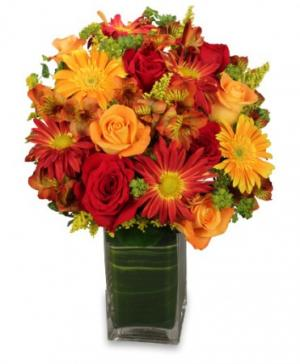 Colorful Canvas Arrangement in Benbrook, TX | BENBROOK FLORAL LLC.