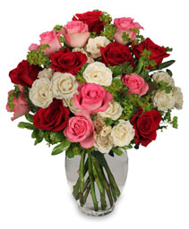 Romance of Roses Petite Spray Roses