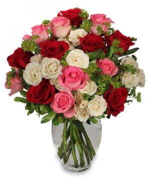Romance of Roses Petite Spray Roses in Burnt Hills, NY | THE COUNTRY FLORIST