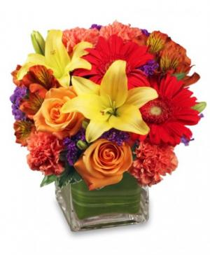 Bright Before Your Eyes Flower Arrangement in Rising Sun, MD | Perfect Petals Florist & Decor