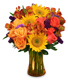 Colorful Canvas Arrangement