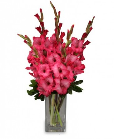 Filled with gladness gladiolus bouquet in richmond vt crimson poppy filled with gladness gladiolus bouquet mightylinksfo