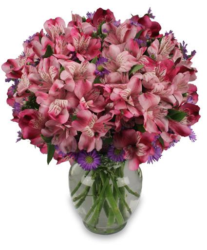 MAGENTA AGENDA Flower Arrangement