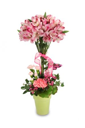 Petal Pink Topiary Bouquet in Ozone Park, NY | Heavenly Florist