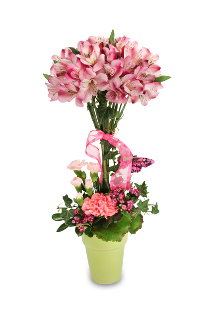 Petal Pink Topiary Bouquet In Colorado Springs Co Jasmine Flowers