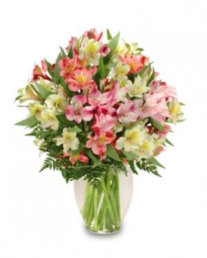 Alluring Alstroemeria Arrangement in Oxnard, CA | Mom and Pop Flower Shop