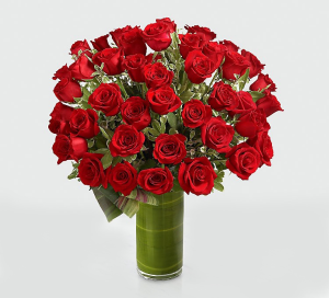 36 red roses  in Falls Church, VA | Geno's Flowers