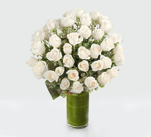 36 white roses  in Falls Church, VA | Geno's Flowers