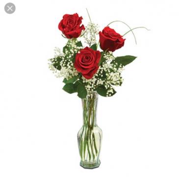 3rose budvase  Valentine