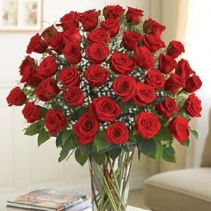 4 Dozen Longstem Red Roses Deluxe Rose Arrangement