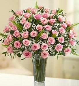 4 Dozen Pink Roses