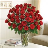 4 DOZEN RED ROSES ULTIMATE ELEGANCE