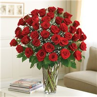 4 DOZEN RED ROSES ULTIMATE ELEGANCE in Dayton, OH | FLOWERAMA