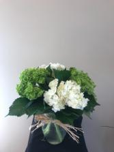 4 stems hydragea summer