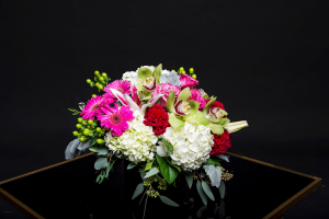 Lady Godiva Lush Luxury Pave  in Irving, TX | Flowers of Las Colinas