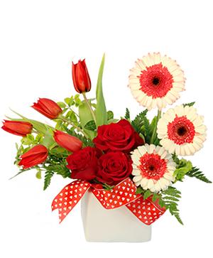Blushing Admirer Floral Design in La Porte, IN | THODE FLORAL