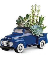48 Ford Pickup Succulent Garden Blooms for him