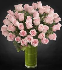 48 Kisses Luxuary Bouquet