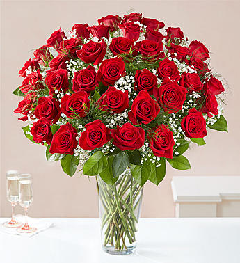 48 LONG STEM RED ROSES