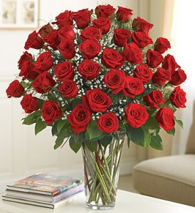 48 Red Roses Arranged in Indianapolis, IN | SHADELAND FLOWER SHOP