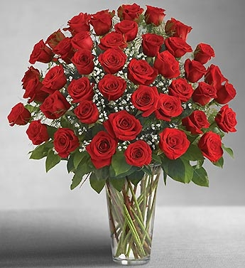 48 Red Roses Vase Arrangement