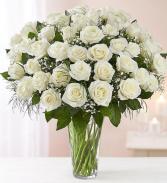 48 White Roses Rose Vase