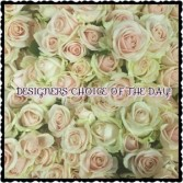 DESIGNERS CHOICE OF THE DAY!! BEST VALUE!! BEAUTIFUL CUSTOM ARRANGEMENT OR HAND WRAPPED FLOWER BOUQUETS ARE AVAILABLE AT ANY PRICE RANGE OF YOUR CHOICE.