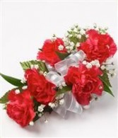 5 Mini Red Carnations  Corsage Corsage