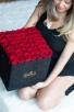 50 FRESH ROSES IN SUADE BOX