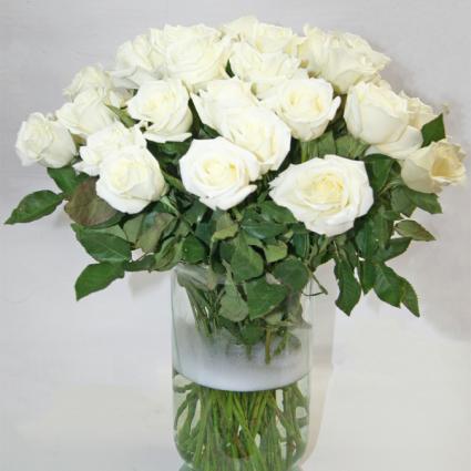50 WHITE ROSES ARRANGED IN A VASE ROSES