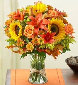 54.95 Fall Delight in Lexington, NC | RAE'S NORTH POINT FLORIST INC.