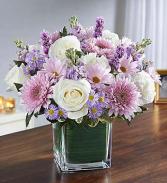 Healing Tears Lavender & White