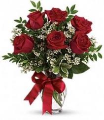 6 BEAUTIFUL RED ROSES