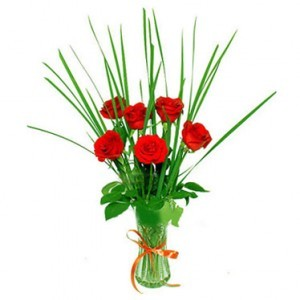 6 Birthday Roses vase