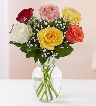 6 Mixed Roses Arranged Vase Arrangement