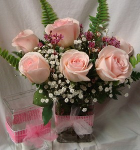 6 pink roses arranged in a vase with babys breath with ribbon 6 pink roses arranged in a vase with babys breath with ribbon detail mightylinksfo