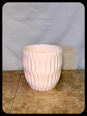 "6"" Plant Ceramic Container Upgrade  in Bryan, TX 