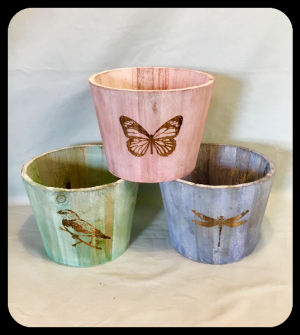 """6"""" Plant Wooden Container Upgrade  in Bryan, TX 